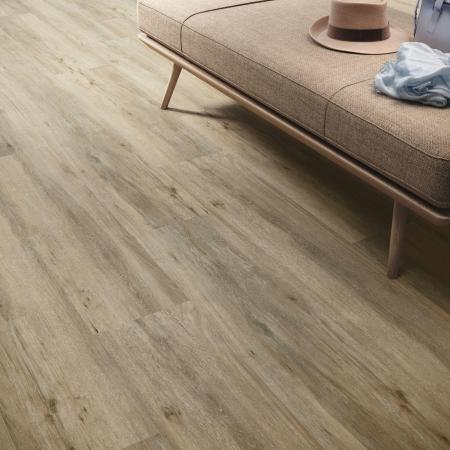 Maryland Natural Feinstein